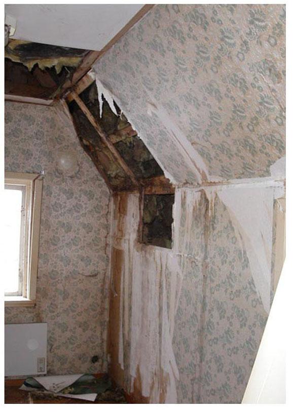 Ombyggnad och renovering Monicas skånelänga